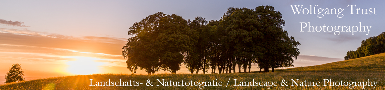 Wolfgang Trust Photography - Natur- und Landschaftsfotografie  / Nature and Landscape Photography